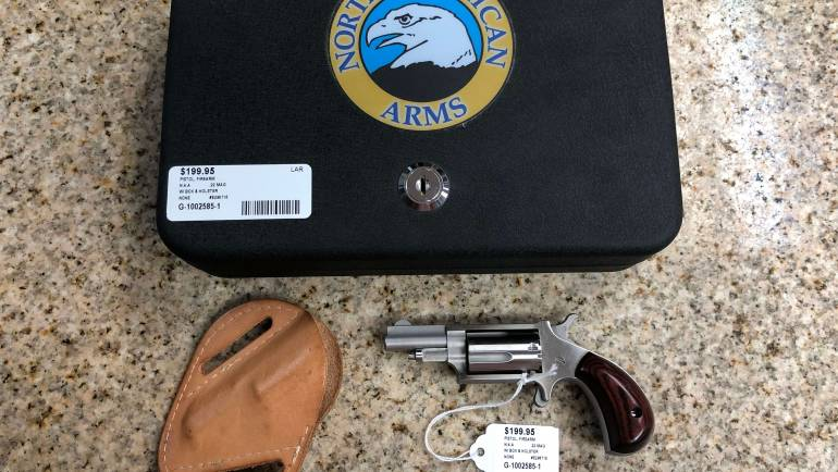 Used NAA 22 Magnum Revolver W/ Box & Holster
